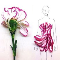 fashion-illustrations-flower-petals-grace-ciao-4